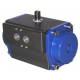 Provaire pneumatic rotary actuators